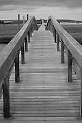 Boardwalk in Sandwich, Massachusetts
