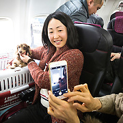 """CHIBA, JAPAN - JANUARY 27 : A woman and his dog takes photos inside of a plane in Chiba, Japan on January 27, 2017. Japan Airlines """"wan wan jet tour"""" allows owners and their dogs to travel together on a charter flight for a special three-day domestic tour to Kagoshima Prefecture, southwestern Japan. As part of the package tour, the owners and their dogs will also get to stay together in a hotel and go sightseeing in rented cars. (Photo by Richard Atrero de Guzman/ANADOLU Agency)"""