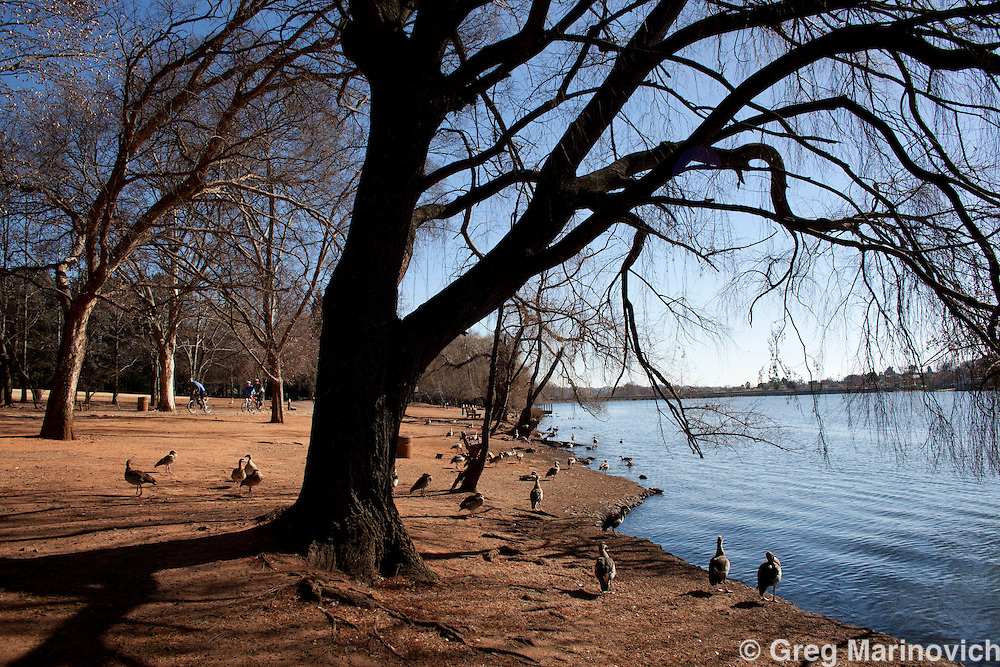 Emmerentia Dam and the Johannesburg Botanical Gardens are one of the main outdoor leisure sites in northern Johannesburg. People canoe, kayak, run and do off road cycling. Greg Marinovich / StoryTaxi.com