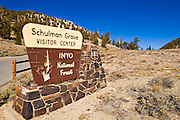 Sign at the Schulman Grove, Ancient Bristlecone Pine Forest, Inyo National Forest, White Mountains, California