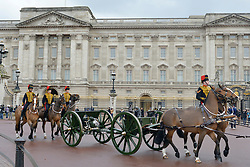 © Licensed to London News Pictures. 06/02/2013. London, UK The King's Troop Royal Horse Artillery, wearing immaculately presented full dress uniform, provide a colourful spectacle as they ride past Buckingham Palace today, 6th February 2013, to Green Park to stage a 41 Gun Royal Salute marking the 61st Anniversary of the Accession of Her Majesty The Queen. Photo credit : Stephen Simpson/LNP