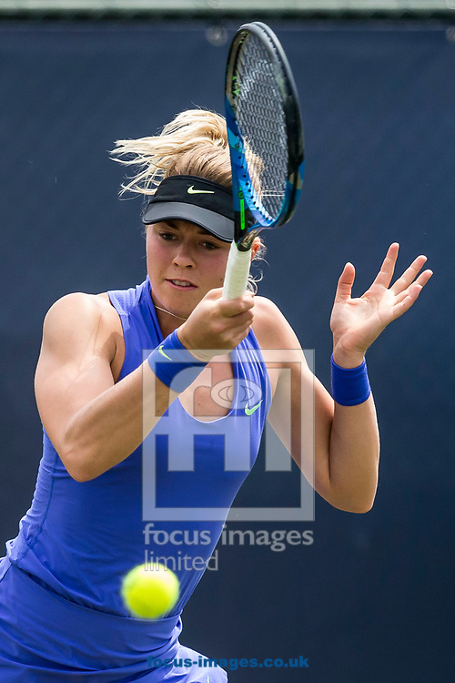 Carina Witthoeft (GER) on day two of the Ricoh Open Tennis Tournament at the Autotron, Rosmalen, Netherlands.<br /> Picture by Joep Joseph Leenen/Focus Images Ltd +316 5261929<br /> 13/06/2017<br /> ***NETHERLANDS OUT***