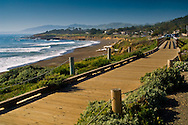 Wooden boardwalk along the coastal bluffs at Cambria, California
