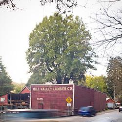 Mill Valley Lumber Company, Milll Valley, CA