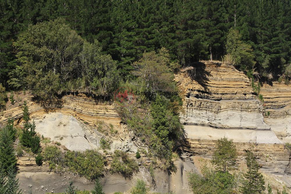 Conguillío National Park, Chile