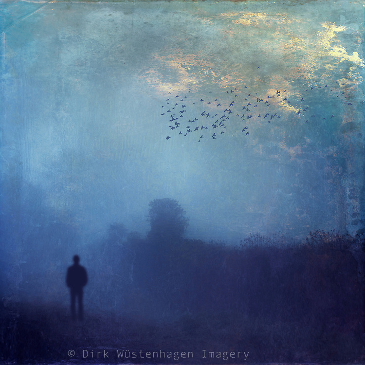 Blue tinted moody ladscape on a misty day - texturized photograph