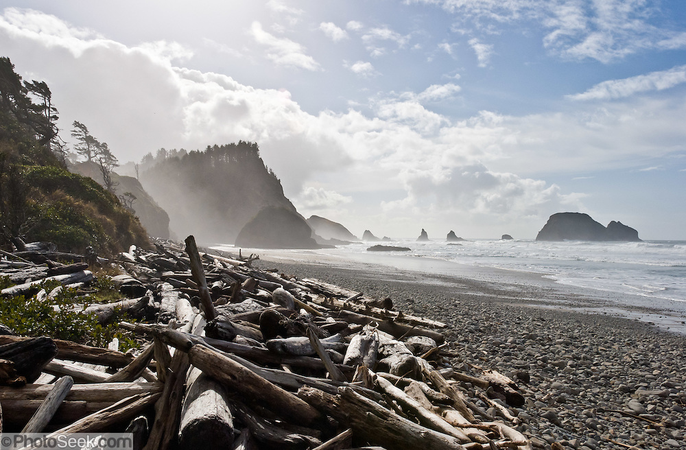Pacific Ocean waves have eroded seastack rocks from high bluffs and tides have cast driftwood logs onto a rocky beach located south of Cape Meares on the Oregon coast, USA.