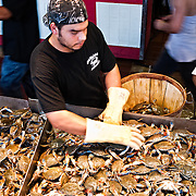 Fishmonger sorting fresh crabs at the Maine Avenue Fish Market on the waterfront in Washington DC.