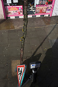 Seen from a London bus, an aerial view of an ad for a beauty and nail parlour, a tree and workmens' sign outside.