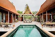 Green Gecko, Um Chan village, Udon Thani