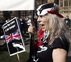 MAR 13 2014  Anti Badger Cull Demo