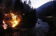Wildfire burns along the middle fork of the Boise RIver near Atlanta, ID.