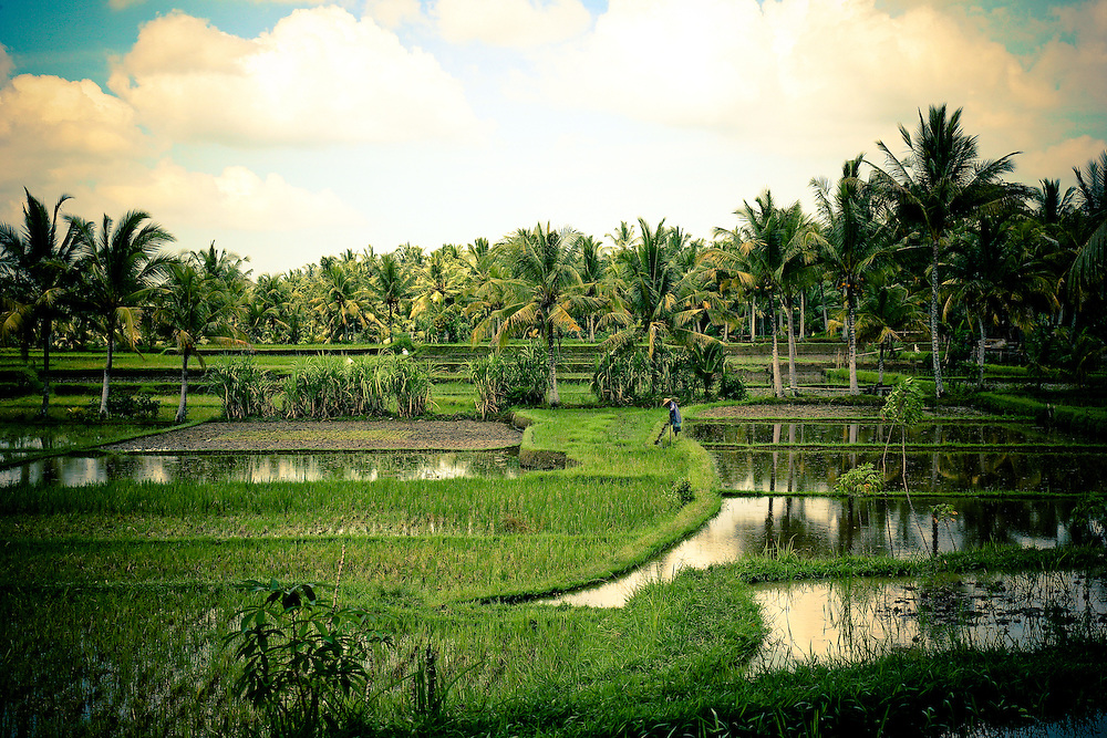 Bali Travel Photos