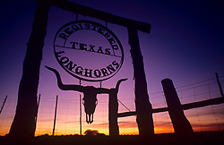 Ranch sign indicating registered Texas longhorns