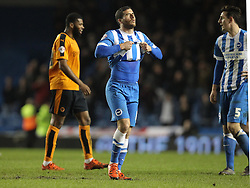 Tomer Hemed of Brighton and Hove Albion looks dejected after his team lose the match - Mandatory byline: Paul Terry/JMP - 07966 386802 - 01/01/2016 - FOOTBALL - Falmer Stadium - Brighton, England - Brighton v Wolves - Sky Bet Championship