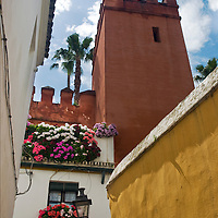 """Narrow street and houses painted in vivid colors in the """"Juderia"""" the former jewish part of the city of Seville."""