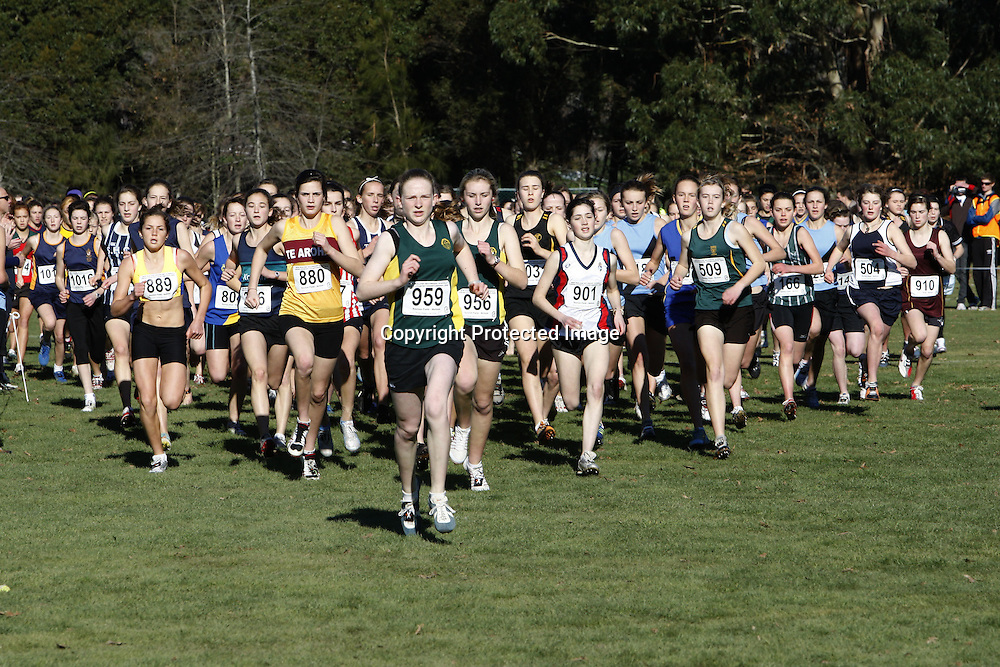 The start of the junior girls 3000m event during Saturday's New Zealand Secondary Schools Cross Country Championships at Saxton Field. 20 June 2009. Photo: PHOTOSPORT
