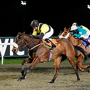 Lucky Mark and G Gibbons winning the 7.35 race