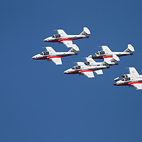 The Canadian Snow Birds perform Acrobatic maneuvers during the air show at Fleetweek in San Francisco.