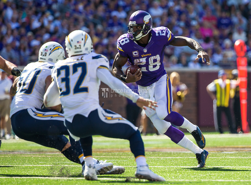 Sep 27, 2015; Minneapolis, MN, USA; Minnesota Vikings running back Adrian Peterson (28) carries the ball during the third quarter against the San Diego Chargers at TCF Bank Stadium. The Vikings defeated the Chargers 31-14. Mandatory Credit: Brace Hemmelgarn-USA TODAY Sports