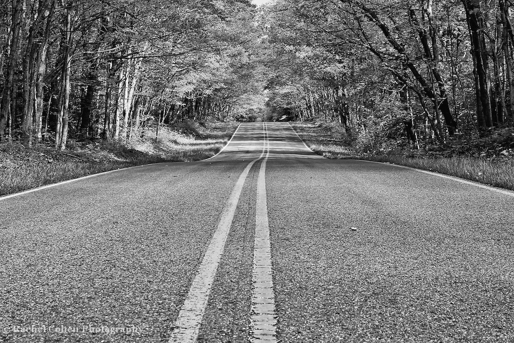 &quot;Double Yellow&quot; B&amp;W<br />