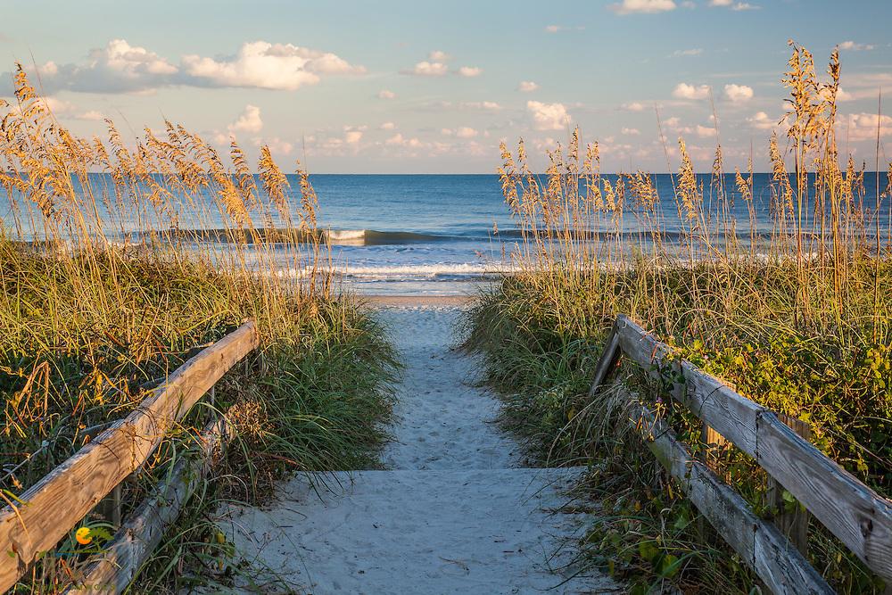 Boardwalk, beach, waves and sea oats