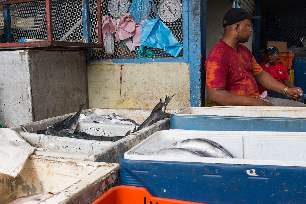 FISH MARKET PANAMA / MERCADO DE MARISCOS DE PANAMA<br /> Photography by Aaron Sosa<br /> Panama City, Panama 2015<br /> (Copyright &copy; Aaron Sosa)