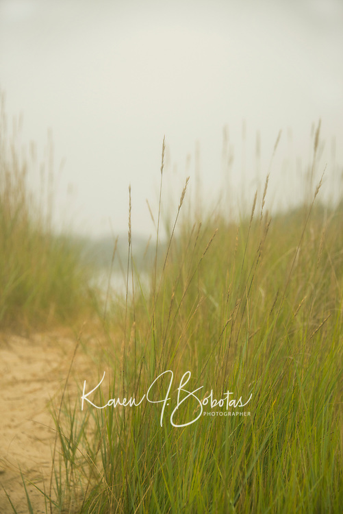Wiseman Family 50th Birthday Weekend in Cape Cod.  ©2014 Karen Bobotas Photographer