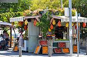 Fruit juice (smoothie) stall in Emek Refaim Street in the German Colony neighbourhood, West Jerusalem, Israel
