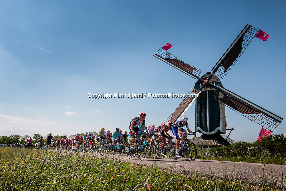 Front of the peloton with riders of Team Giant - Alpecin (GER) on the Molendijk at Batenburg, stage 2 from Arnhem to Nijmegen running 190 km of the 99th Giro d'Italia (UCI WorldTour), The Netherlands, 7 May 2016. Photo by Pim Nijland / PelotonPhotos.com | All photos usage must carry mandatory copyright credit (Peloton Photos | Pim Nijland)