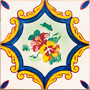 Floral design Painted ceramic tiles photographed in Aveiro district, Portugal
