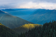 Evening light streams under clouds at Hurricane Ridge in Olympic National Park, Port Angeles, Washington