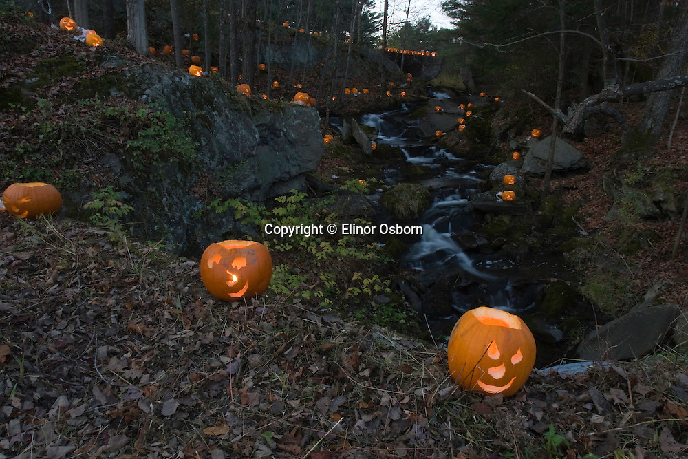 Cilley Hill Pumpkin Glow
