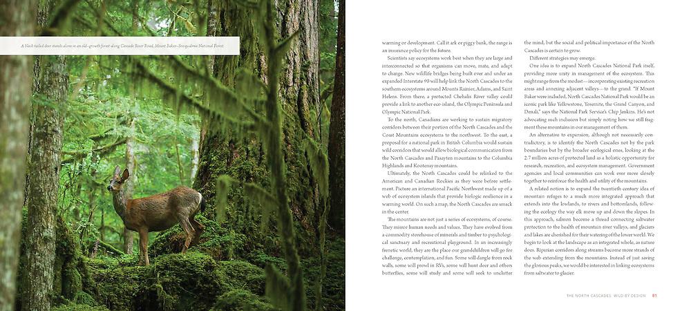 Braided River: The North Cascades (2014)