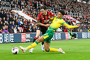 Jamal Lewis (12) of Norwich City challenges Adam Smith (15) of AFC Bournemouth during the Premier League match between Bournemouth and Norwich City at the Vitality Stadium, Bournemouth, England on 19 October 2019.