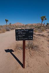 Boy Scout Trail, Joshua Tree National Park, California, US
