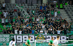 Green Dragons, fans of Olimpija during football match between NK Olimpija Ljubljana and NK Celje in 3rd Round of Prva liga Telekom Slovenije 2018/19, on Avgust 05, 2018 in SRC Stozice, Ljubljana, Slovenia. Photo by Vid Ponikvar / Sportida