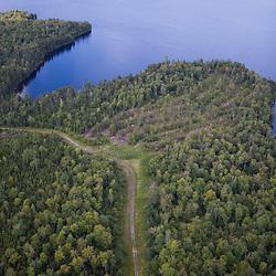 Logged area on Plum Creek land next to Brassua Lake Maine USA