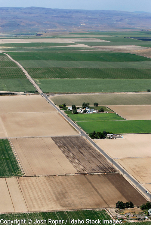 Idaho. Aerial  patchwork of green fields and a country road in summer in Southwestern Idaho.