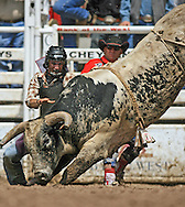 Bull Rider Colt Jeffrey Orchard tries to escape from 9 Ivan Ashworth JO, 27 July 2007, Cheyenne Frontier Days
