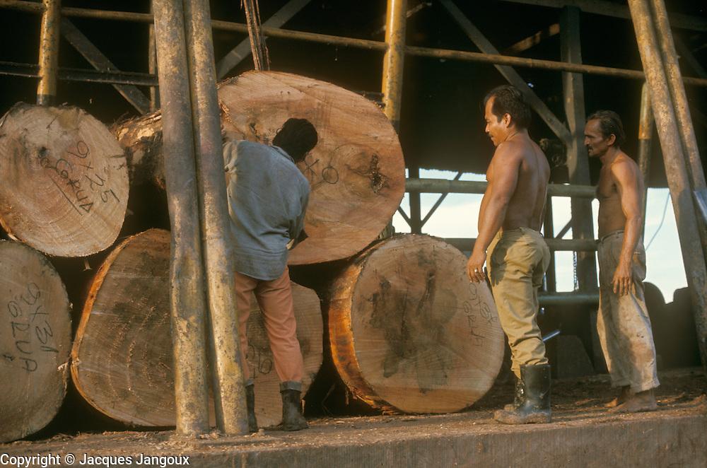 Logs at sawmill in Pucallpa on Ucayali River, Peru