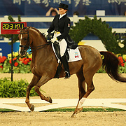 Ashley Holzer and Pop Art at the Hong Kong Equestrian Venue of the 2008 Beijing Olympic Games
