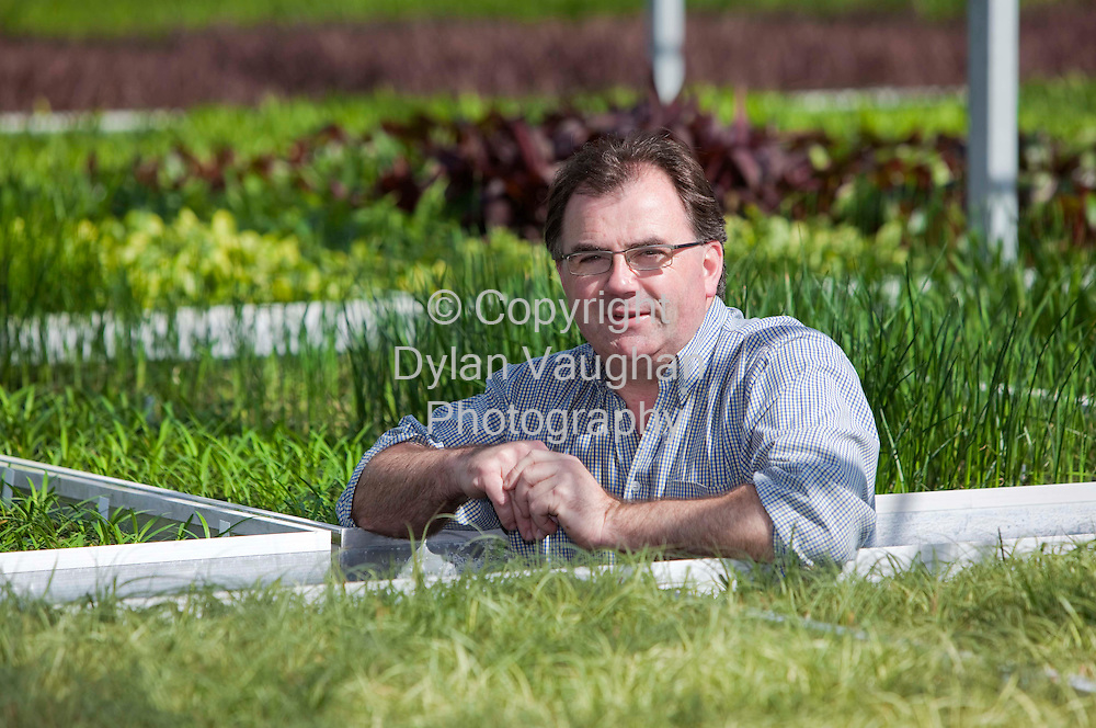 11/5/2009 .Pat Fitzgerald at FitzGerald Nurseries Oldtown, Stoneyford, Co. Kilkenny..Picture Dylan Vaughan