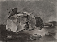 BAG WITH RAT, charcoal 2013