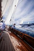 Mariella, Lions Whelp at the Antigua Classic Yacht Regatta