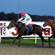 Kempton 1st November 2012