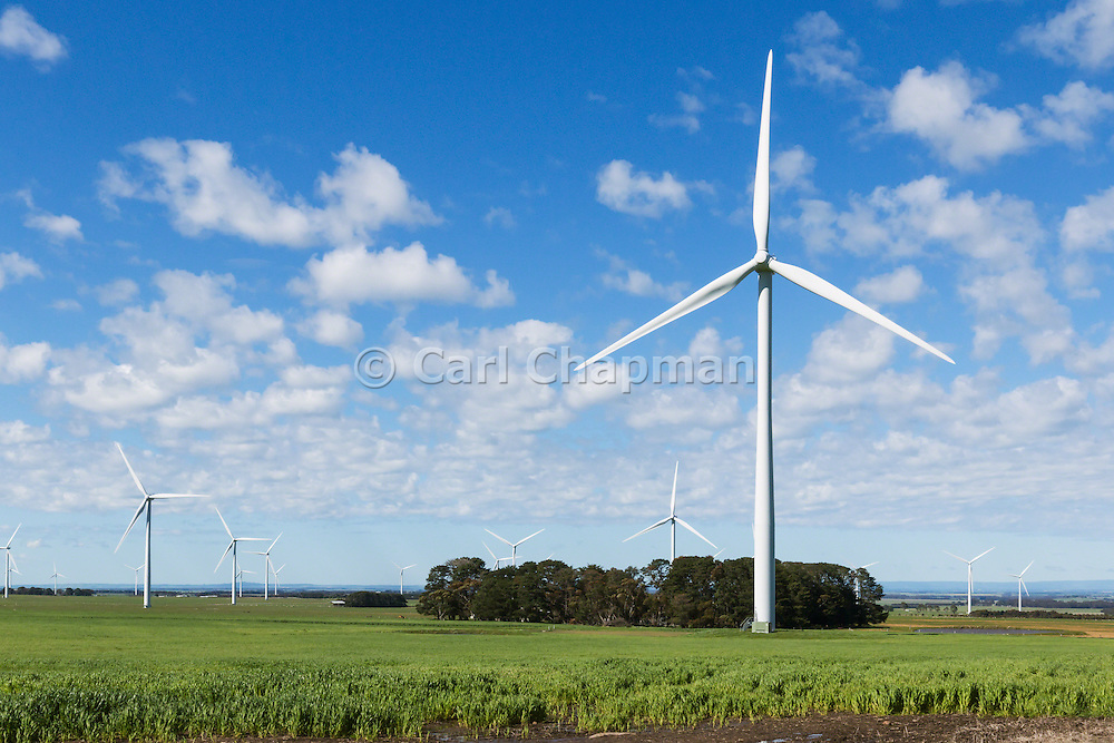 wind turbine in a rural paddock in the countryside at the Mount Mercer wind farm, Victoria, Australia