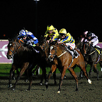 Invigilator and D Swift winning the 7.00 race