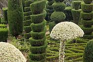 Elaborate topiary in the Jardim Botanico, Madeira, Portugal