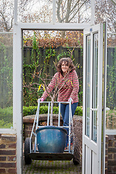 Using a sack truck to bring a large pot plant (peach tree) into the greenhouse for winter protection. Prunus persica